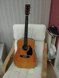 Hohner arbor,lw400 guitar