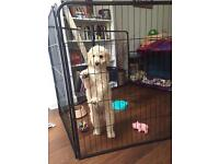 Dog/puppy play pen