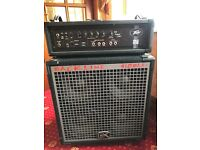 Backline 410BLX-ii Bass with Peavey Max 450 Bass Amp