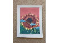 Free small painting cuban sunflower picture