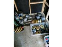 Free weights and bars
