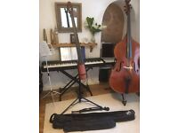 NS Design NXT4 Electric Upright Double Bass
