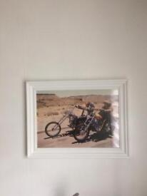 Easy Rider A3 Size Poster