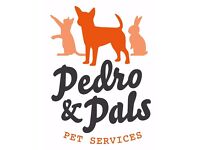 Pedro & Pals Pet Services
