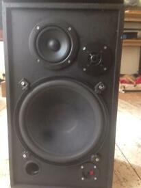 12 inch house speakers