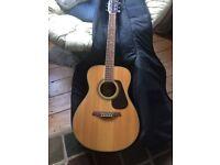 Vintage Guitar v300