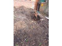 Loads of Top soil