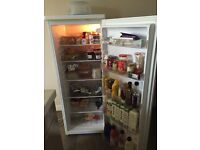 BUSH Tall Larder Fridge Size H143, W55, D58cm excellent condition as new