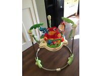 Rainforest Jumperoo excellent condition