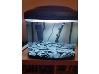 48 litre fish tank aquarium
