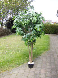 7ft tall Artificial Tree - great condition