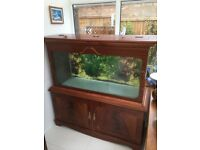 Aquarium in hand crafted wooden cabinet