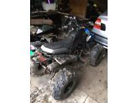 110cc Adults quad