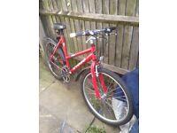 Bikecycle good bike new tyree