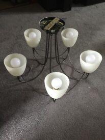 Chrome Light with 5 bulbs