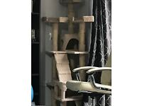 Cat tree/ activity centre for sale £20
