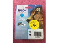 Epson ink cartridges,black and cyan - unopened