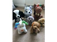Collection of Dog Soft Toys