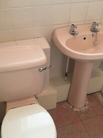 Pink basin and toilet