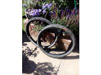 Various mountain bike tyres for 26 inch wheel.