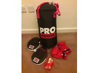 Punch bag, gloves, targets and extras