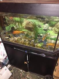 Jewel aquarium fish tank and fluval external filter