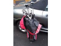 Mizuno Astron golf clubs plus stand bag for sale