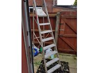 7 stept + platform ladder