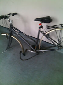Free Pushbike Needs Major Repair Pinnacle Strauss