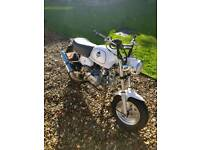 125cc road/learner legal monkey bike 2014, limited edition.