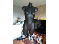 Female mannequin on adjustable stand