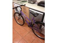 Beautiful lady/s bike £35 can deliver for petrol 26 wheel 17 frame 18 gears in great condition