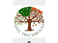 Apex Tree Services - Professional, competitive, insured and qualified.