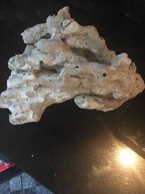 Dry branching rock for marine aquarium £4 per kg