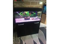 180l fish tank 3.5 ft full set up with stand filter 2 light heater sand ornament all work in pic