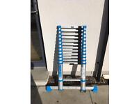 Macallister telescopic ladder 3.8 meters
