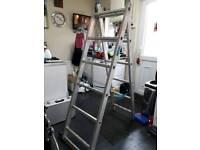 5ft Apex ladder