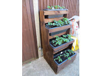 4 tiered strawberry planter