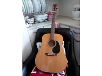 Ray Pierre Acoustic Guitar