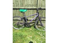 Apollo Thela bike