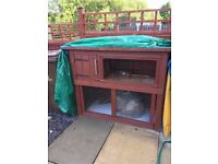 Two storey rabbit hutch. Solid, homemade, recently varnished (done every year anyway)