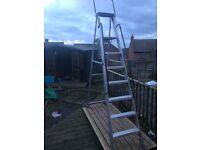 Heavy duty step ladders