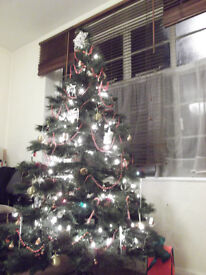 Christmas tree for sale!
