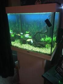 Jewel Lido 200 tank and cabinet