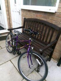 """Girls Raleigh bike. 24"""" wheels"""