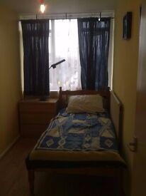Great Single Room In CLEAN Flatshare