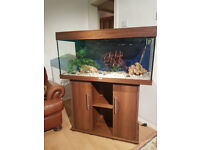 JUWEL RIO 180 LITER FISH TANK AND STAND FOR SALE