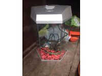 Fish tank 🆕 like new 🆕. 25 litre