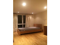 Free room to share with a girl on 215 Sirdar Road /Turnpike Lane/