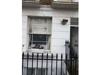 2bedroom maisonette Victorian street conversion with sole garden seeks similar